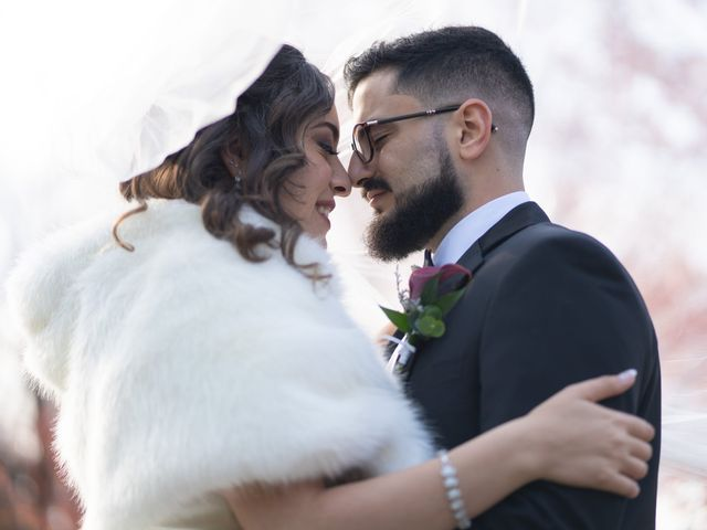 The wedding of Nour and Khaled
