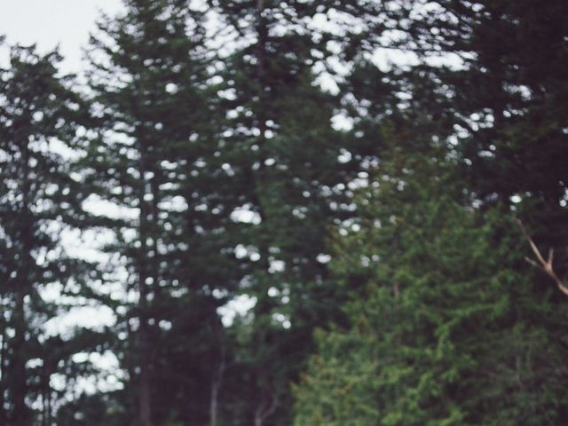 Matt and Lindsey's wedding in Bowen Island, British Columbia 30
