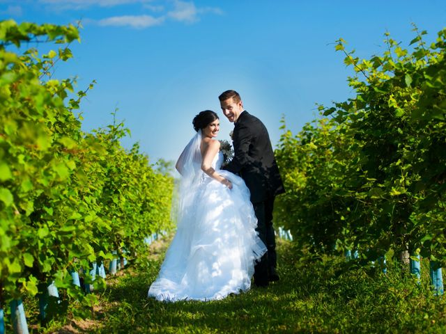 The wedding of Angela and David