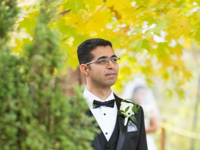 Youstina and Peter's wedding in Mississauga, Ontario 3