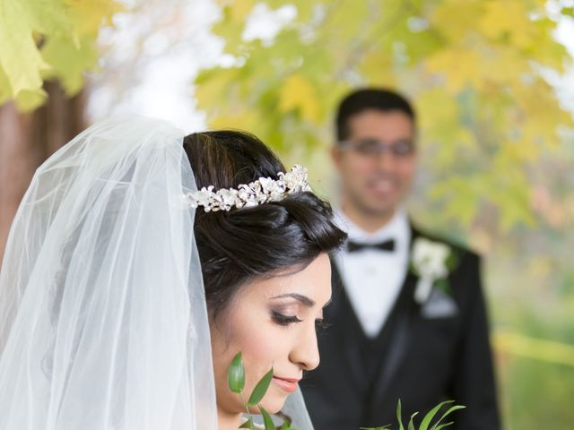 Youstina and Peter's wedding in Mississauga, Ontario 1