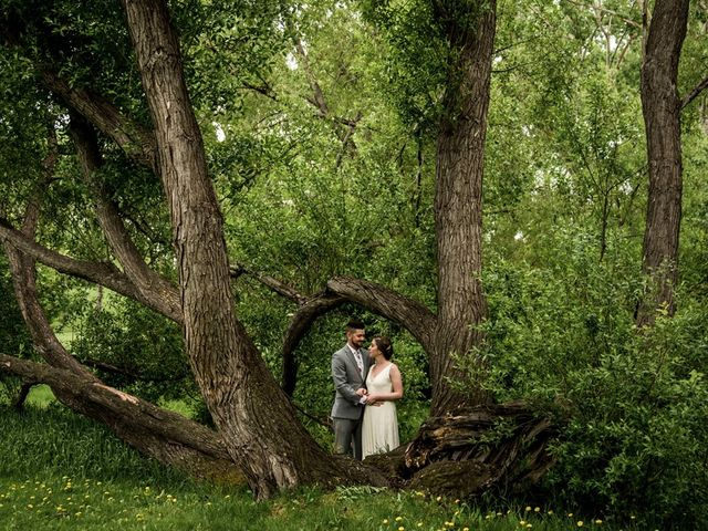 The wedding of Meghan and Steve