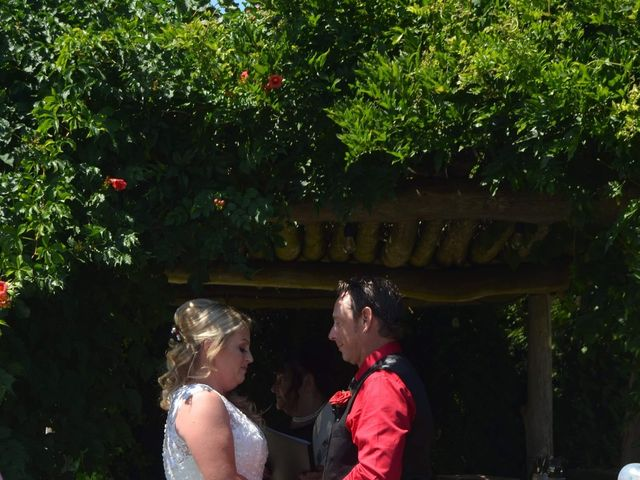 Al  and Megan's wedding in Niagara on the Lake, Ontario 4