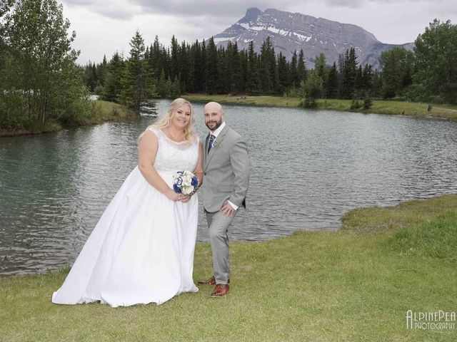 The wedding of Courtney  and Steve