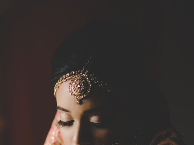 Marc and Roshni's wedding in Mississauga, Ontario 3