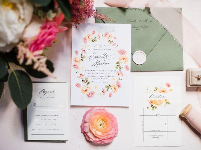 Marcus and Camilla's wedding in Delhi, Ontario 1