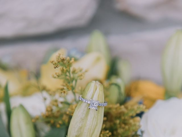 Meng and Jinyoung's wedding in Hamilton, Ontario 5
