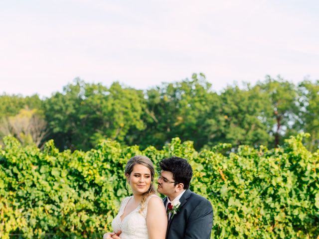 Demitri and Julia's wedding in St Catharines, Ontario 39
