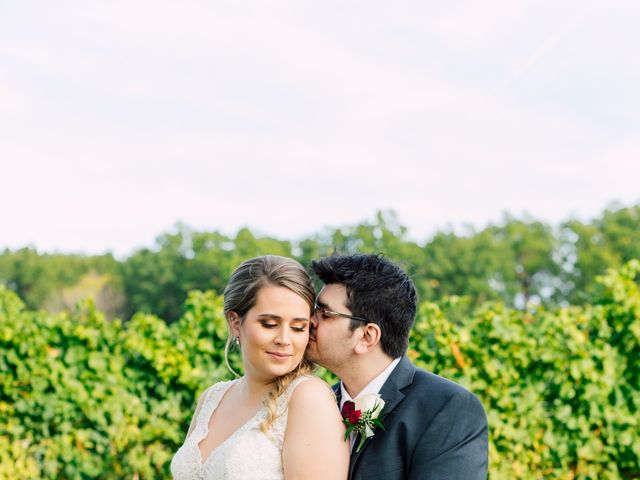 Demitri and Julia's wedding in St Catharines, Ontario 40