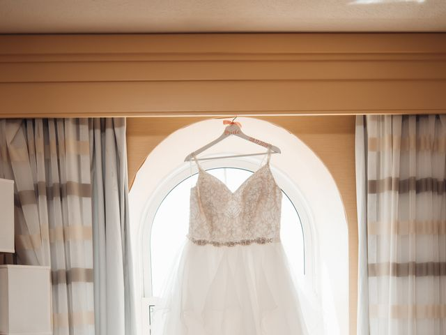 Ray and Louise's wedding in Kitchener, Ontario 3