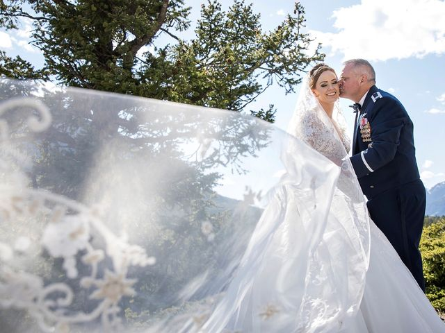 The wedding of Amber and Wayne