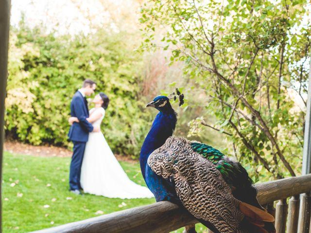 Matt and Susan's wedding in Calgary, Alberta 21