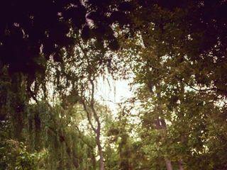 Linden Gardens 3