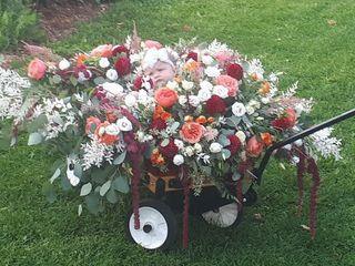 Floral Classics 4