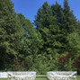 The wedding of Gemma Brown and Pocketful Productions 10