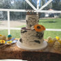 The wedding of Meagan Bouwsema and A Slice of Art 9