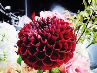 VintageBASH: Decor, Florals + Rentals 2