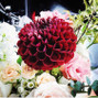 The wedding of Lucy Sun and VintageBASH: Decor, Florals + Rentals 5