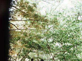 Royal Botanical Gardens 2