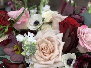 Foxgloves Flowers 5