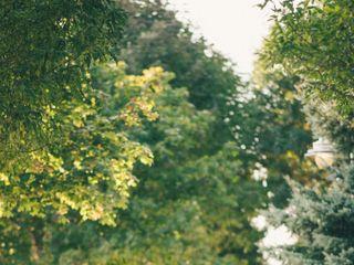Iain & Cass Photography 4