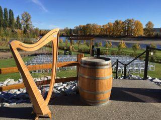 Shoshanna Godber - Celtic harp and voice 1