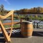 Shoshanna Godber - Celtic harp and voice 3