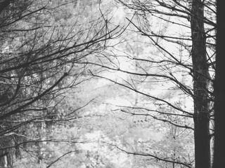 Krysta Gorman Photography 2
