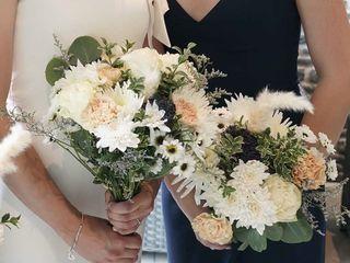 Callia Flowers 5
