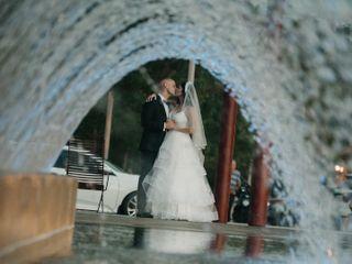 Timeless Tree Weddings 2