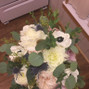 The wedding of Zoe Ferguson and Plush Flowers 7