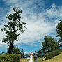 The wedding of Taya Henriques and Andrea Cross Photography 3