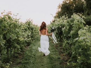 Holland Marsh Wineries 1