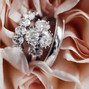 The wedding of Private User and Passion Diamonds 2