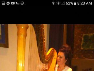 Tracy Sweet - Harpist 1