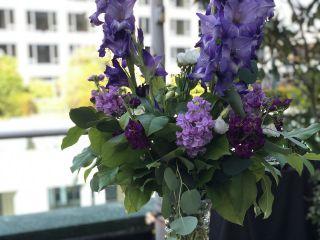 Budget Blooms 1