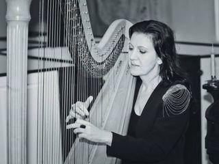 Tracy Sweet - Harpist 3