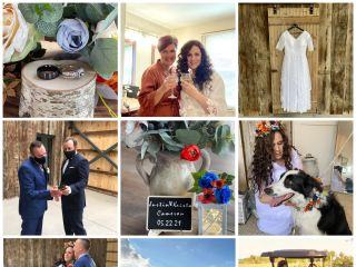 White Orchid Wedding Officiants 2