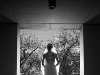 Mitch Lenet Weddings 1
