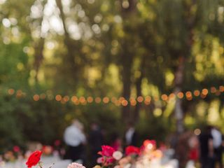 Lustre Events by Melissa & Morgan 2