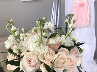 Gatto Flowers 5