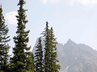 Alpine Peak Photography 7