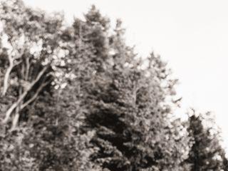 Bodega Ridge 5