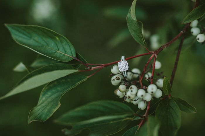 Engagement Rings 2