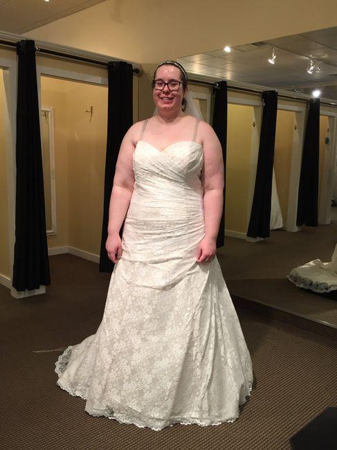 Wedding Dress Shopping = Mixed Emotions 1