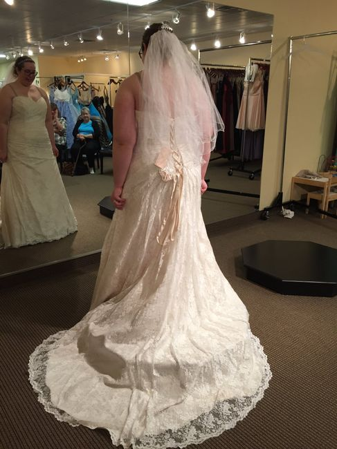 Wedding Dress Shopping = Mixed Emotions 2
