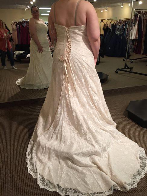 Wedding Dress Shopping = Mixed Emotions 3