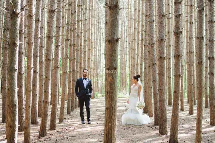 Dramatic Woods Forest Trees Wedding Photography