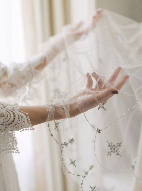 Which veil style is your favourite? Tulle, lace, embellished, or birdcage? 3