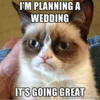 Meme your wedding! - 2
